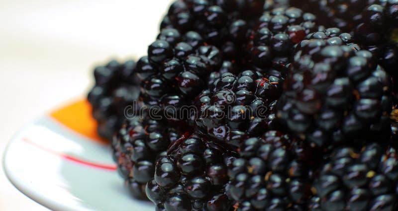 Plan rapproché de Blackberry Du plat se trouve Blackberry noir comme fond image stock