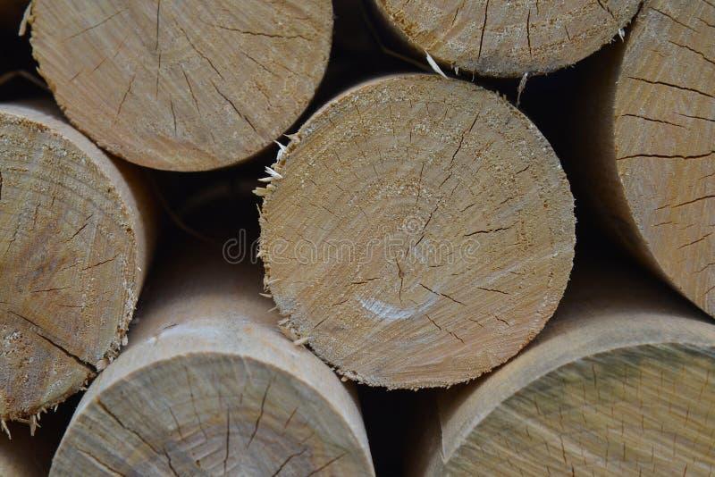 Plan rapproché de bois de chauffage coupé Pile des rondins en bois Fond en bois naturel images stock