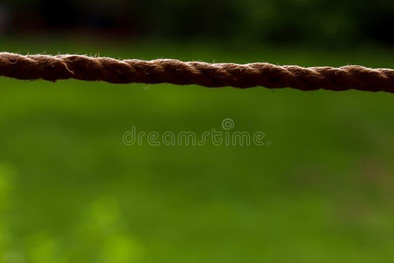 Plan rapproché de corde sur le fond vert Horizontalement attaché D?tail de structure photographie stock libre de droits