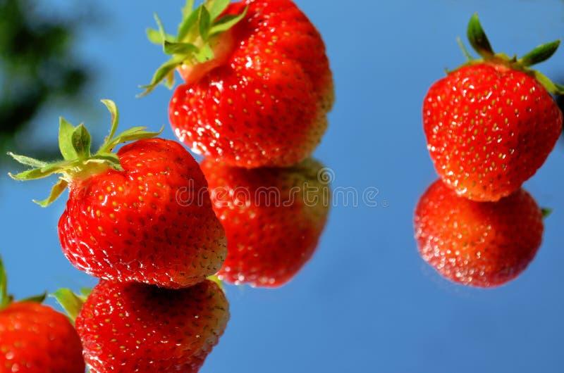 Plan rapproché de fraise reflété dans le miroir contre le ciel image stock