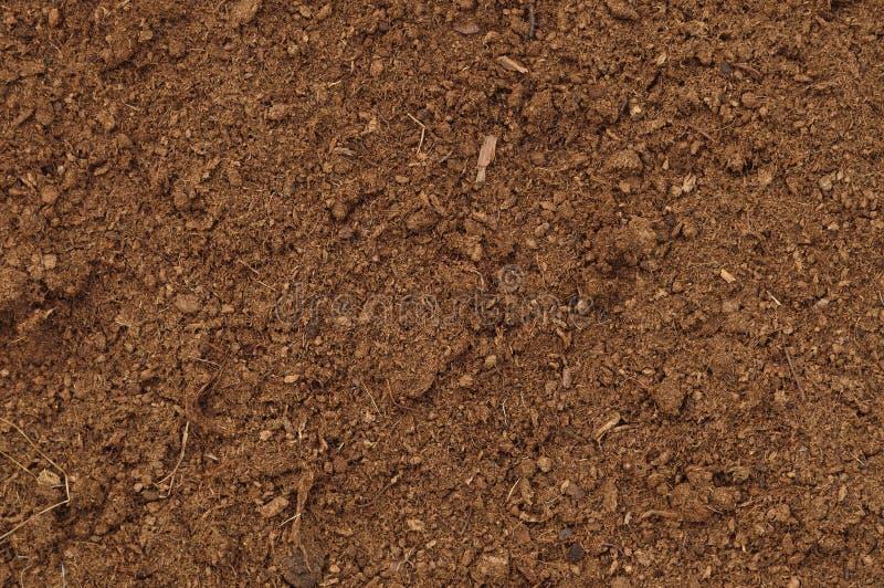 Plan rapproché de gazon de tourbe macro, grand modèle organique brun détaillé de fond de texture de sol d'humus, l'espace texturi photographie stock libre de droits