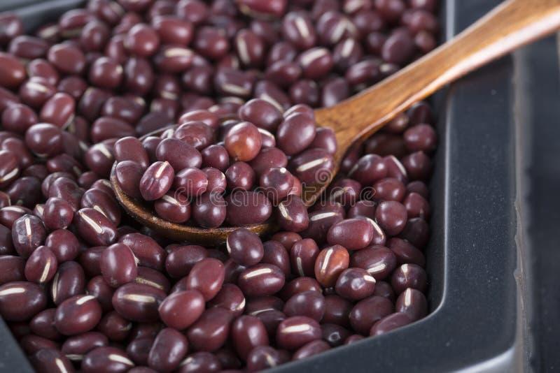 Plan rapproché de haricots rouges image libre de droits