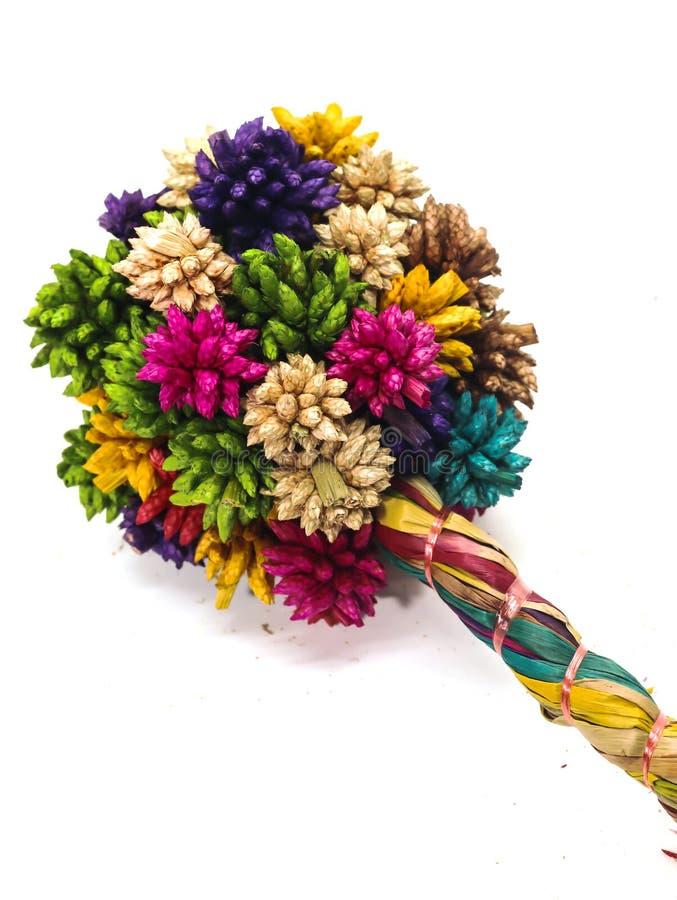 Plan rapproché de la fleur en épi sèche colorée de boule d'isolement sur le CCB blanc images stock