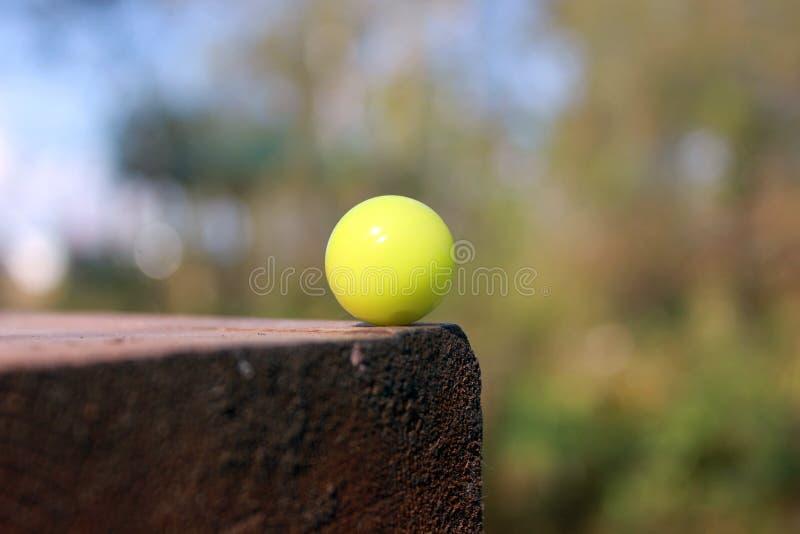 Plan rapproché de munitions de Paintball image libre de droits
