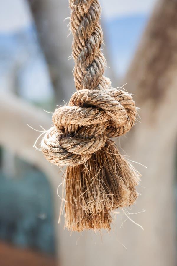 Plan rapproché de noeud de corde photographie stock libre de droits