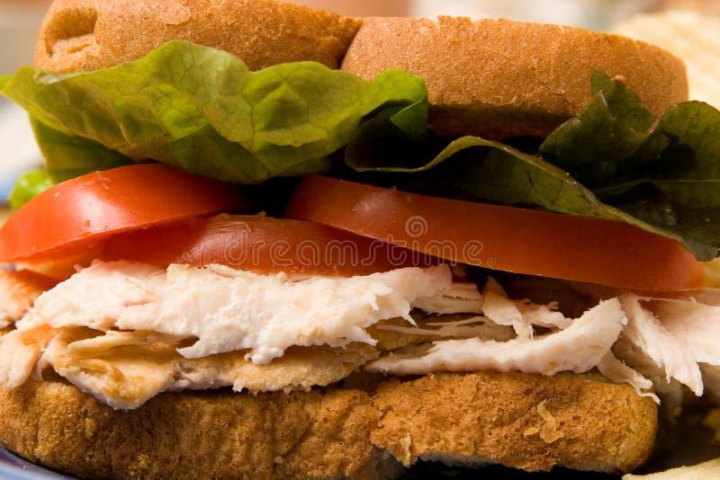 Plan rapproché de sandwich image stock