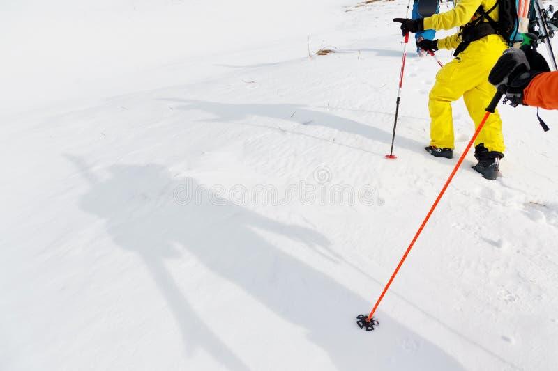 Plan rapproché de skieur d'ombres les jambes d'un groupe allant vers le haut photo stock