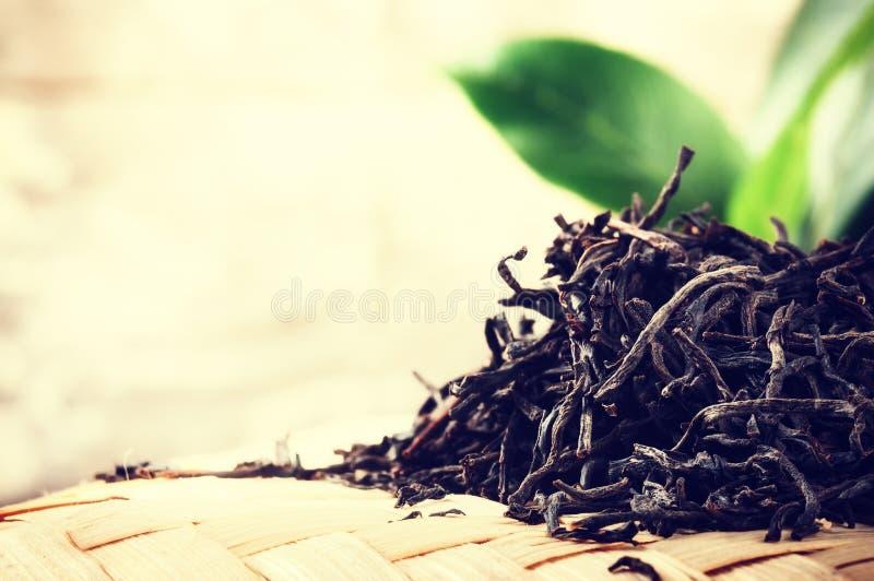 Plan rapproché de thé noir sec photo stock