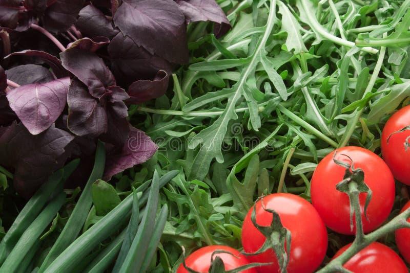 Plan rapproché de tomate-cerise, de basilic, d'arugula et d'oignon vert photo stock
