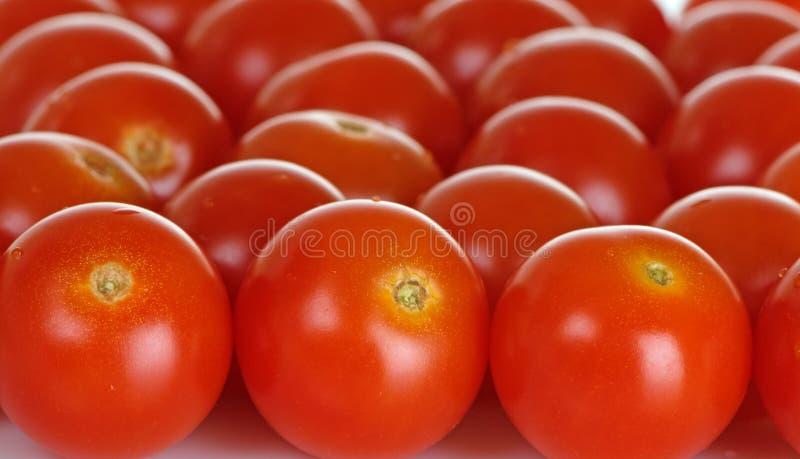 Plan rapproché de tomates-cerises photos libres de droits