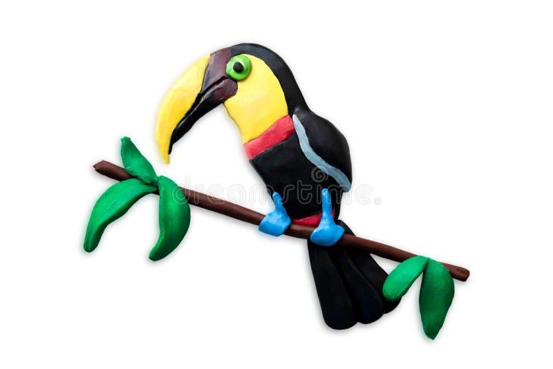 Plan rapproché de toucan de pâte à modeler d'isolement sur le fond blanc Oiseau tropical de pâte à modeler moulé avec ses propres images libres de droits