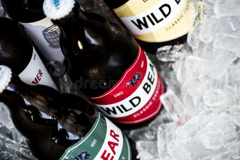 Plan rapproché des bières refroidissant en glace image stock