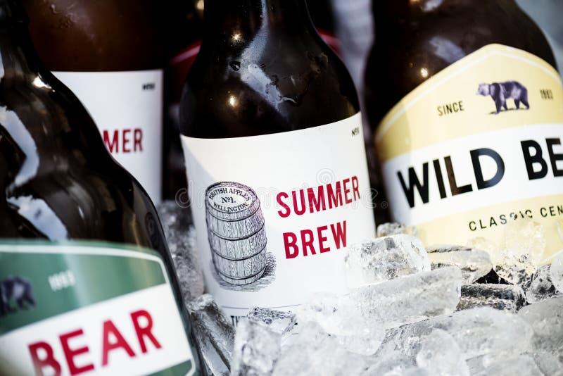 Plan rapproché des bières refroidissant en glace image libre de droits