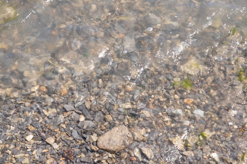 Plan rapproché des cailloux sur la plage lavée par la mer photographie stock