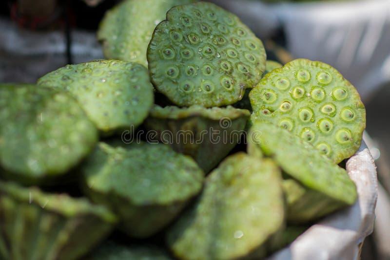 Plan rapproché des fruits frais de lotus Fruits exotiques asiatiques Fruit chinois vert et frais photos stock