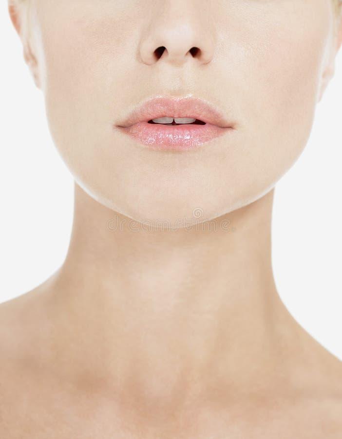 Plan rapproché des lèvres et du cou roses images stock