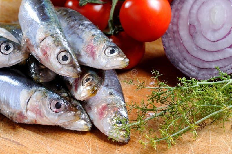 Plan rapproché des sardines photos libres de droits