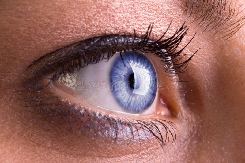 Plan rapproché du œil bleu de la femme image stock