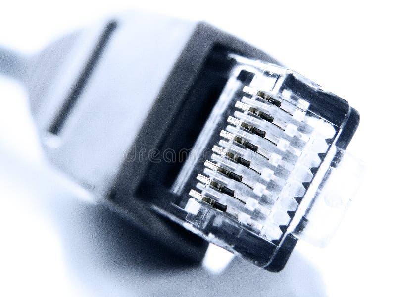 Plan rapproché embrochable du réseau rj45 photo libre de droits