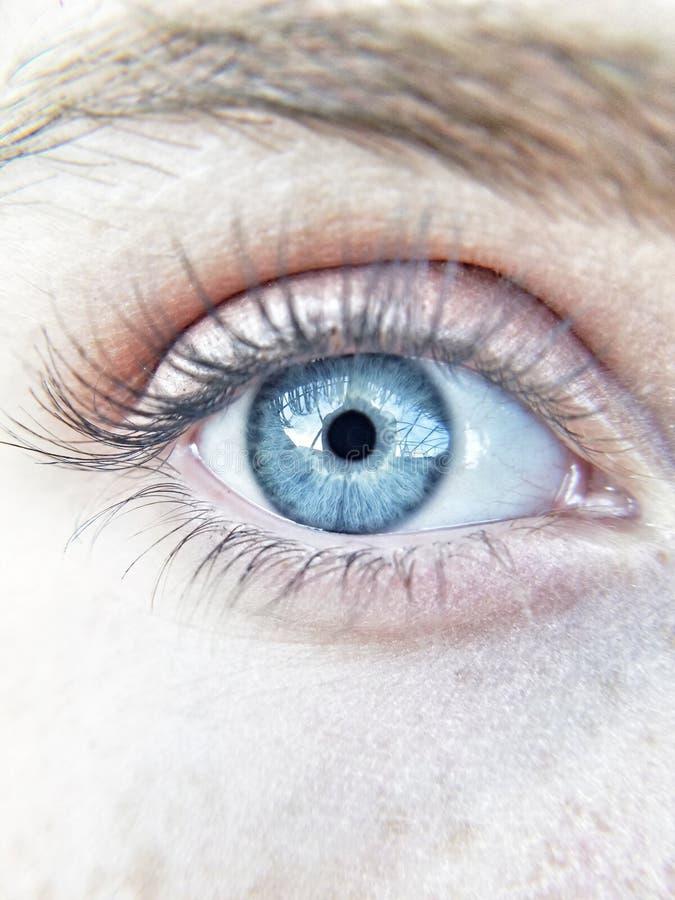 Plan rapproché lumineux d'oeil bleu avec le maquillage photographie stock