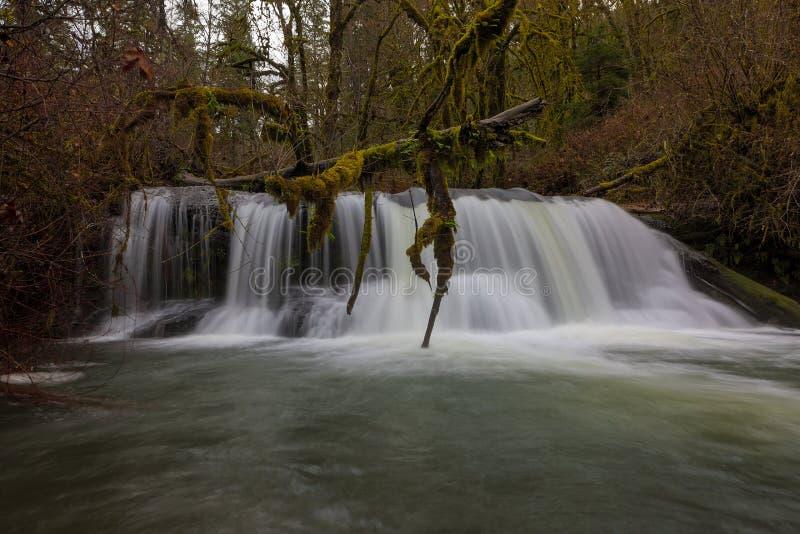 Plan rapproché Portland OU Etats-Unis d'automnes de crique de McDowell photographie stock