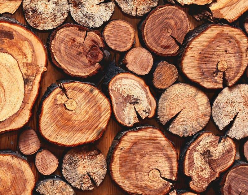 Plan rapproché scié naturel en bois de rondins pour le fond, vue supérieure photos libres de droits