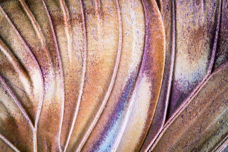 Plan rapproché superbe, texture et modèle d'aile tropicale colorée de papillon indiqués photographie stock libre de droits