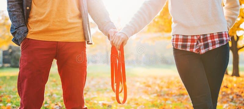 Plan rapproché sur de jeunes couples tenant la laisse ensemble en parc d'automne images stock