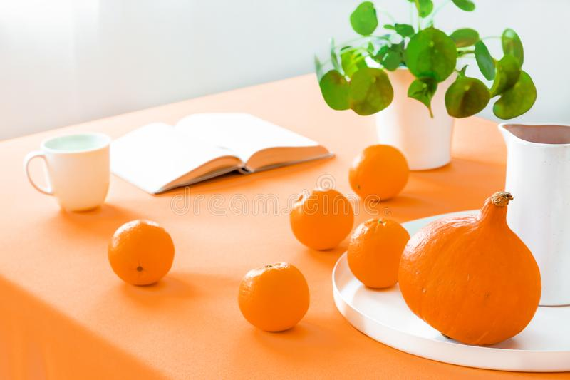 Plan rapproché sur la table avec les oranges et le potiron dans la salle à manger intérieure avec l'usine et le livre photos libres de droits