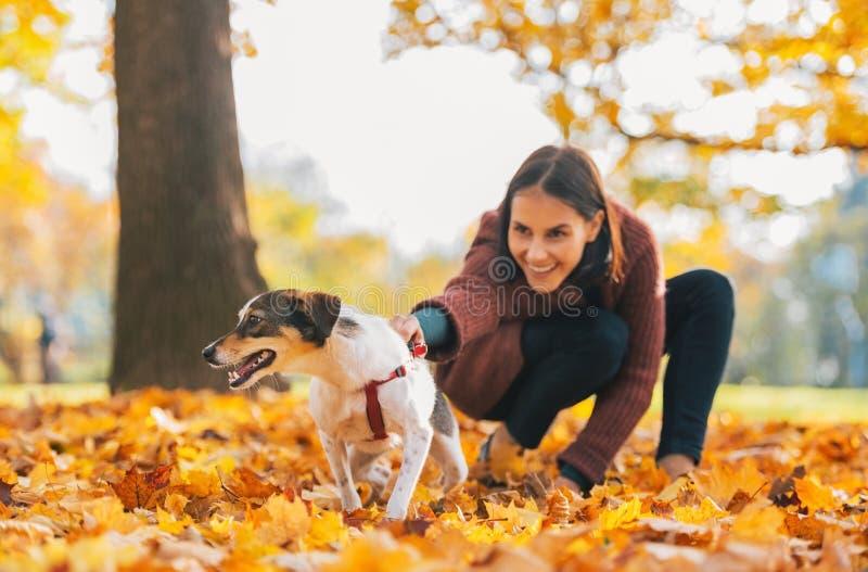 Plan rapproché sur le chien gai et la jeune femme le tenant dehors image stock