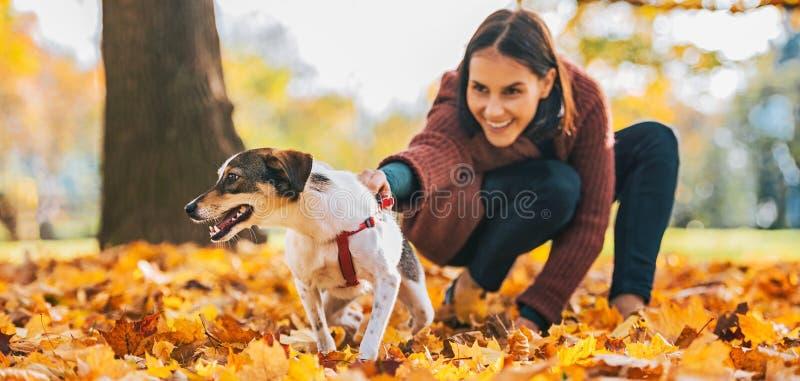 Plan rapproché sur le chien gai et la jeune femme le tenant dehors image libre de droits