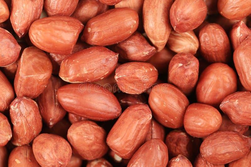 Plan rapproché sur le fond d'arachides image libre de droits