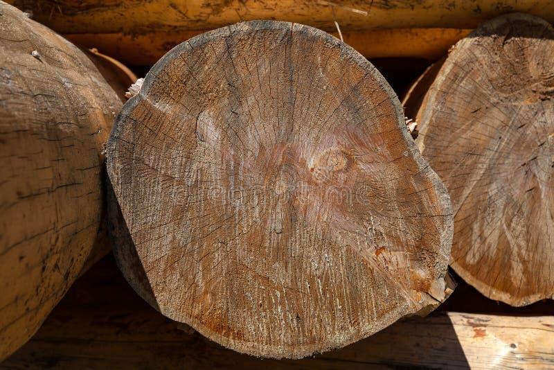Plan rapproché sur un rondin d'un arbre sous forme de bois de construction rond avec des anneaux Matériau de construction de rond photos stock