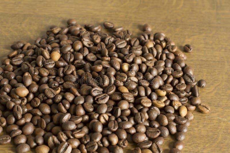 Plan rapproché tiré de la graine de café photos libres de droits