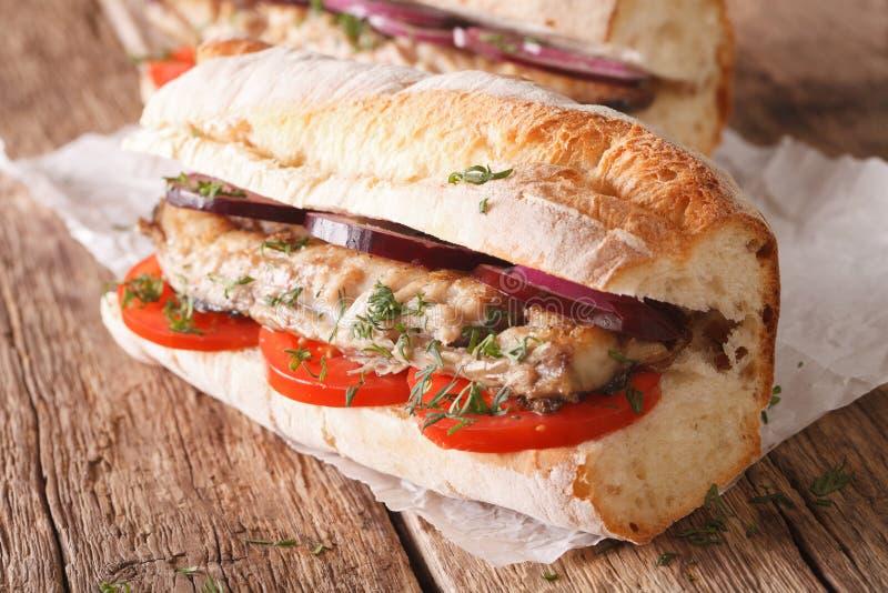 Plan rapproché turc d'ekmek de balik de sandwich horizontal photo libre de droits