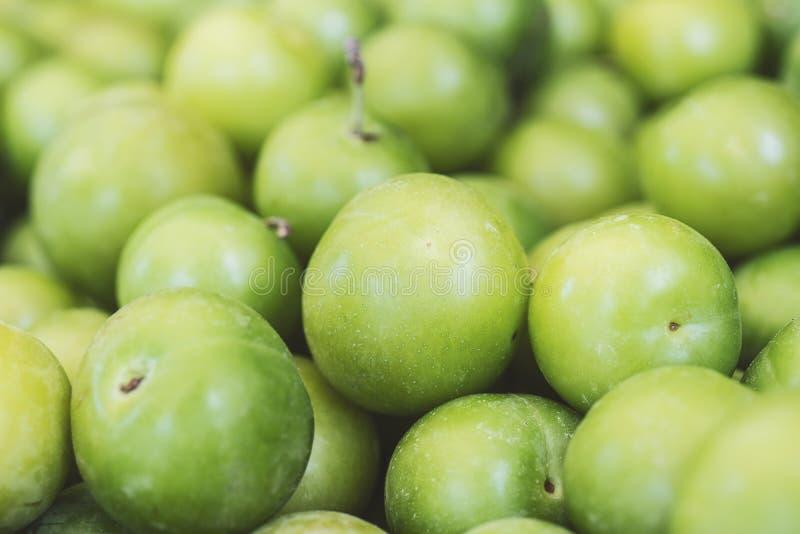 Plan rapproché vert de prunes Prunes de cerise fraîches de prunes image libre de droits