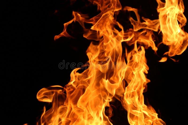 Plan rapproch? d'un grand feu Planches en bois au feu Le feu est allum? pendant la nuit images libres de droits