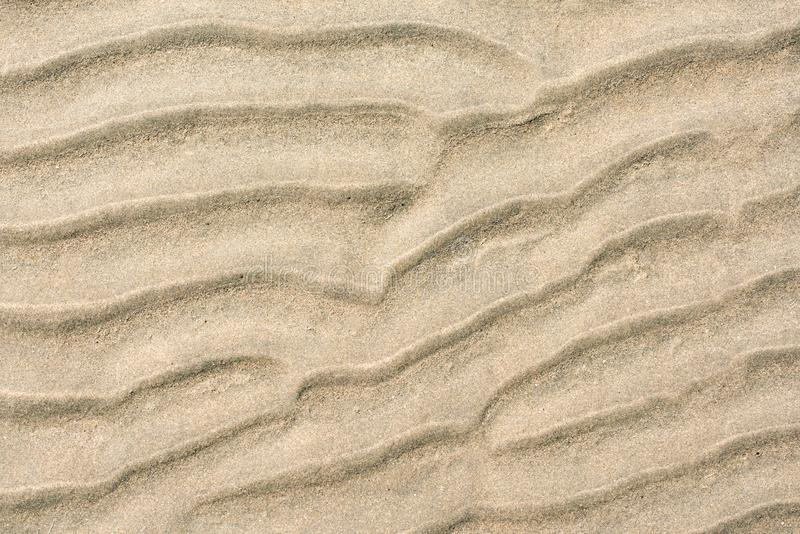 Plan rapproch? de mod?le de sable d'une plage pendant l'?t? images stock