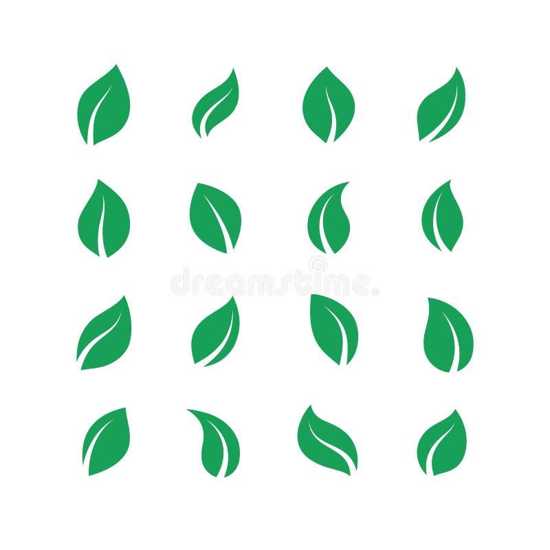Plan sidauppsättning Grönt enkelt skogblad, växt- strikt vegetarianväxtuppsättning, nya energietiketter för eco Sidor för vektorg royaltyfri illustrationer