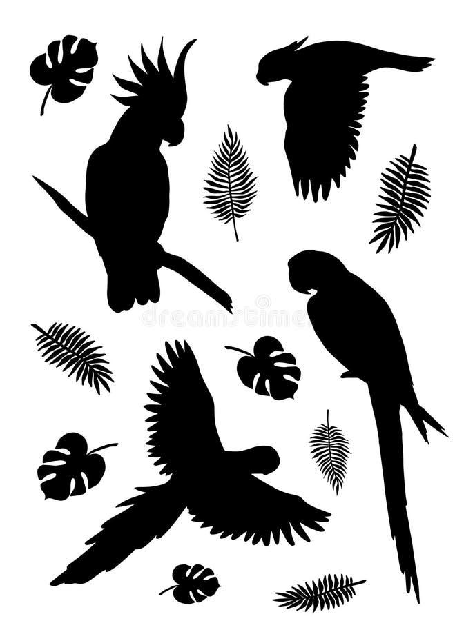 Plan svart fastställd samling för vektor av tropiskt flyg och att sitta för papegojakontur med palmblad på vit bakgrund royaltyfri illustrationer