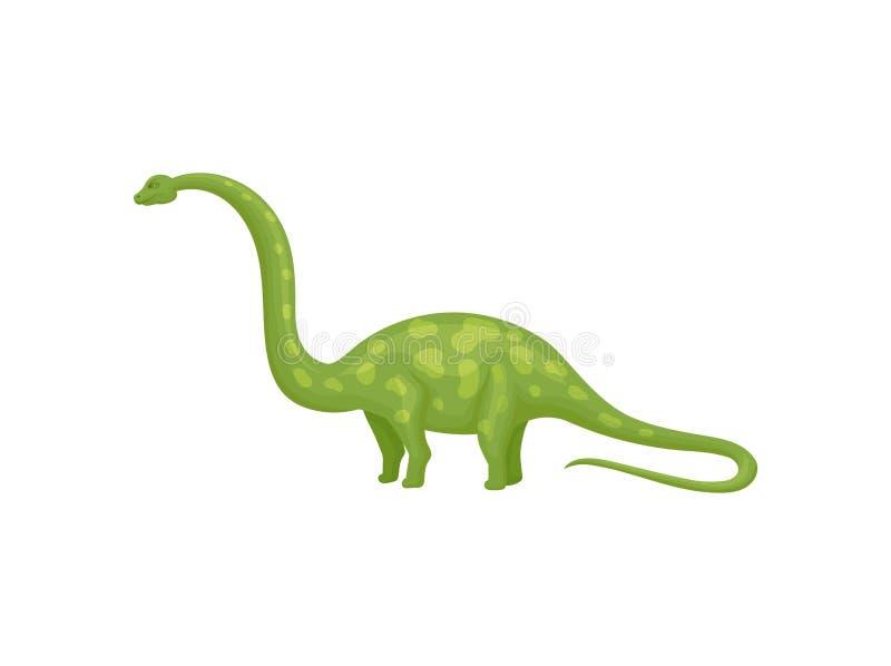 Plan vektordesign av den gröna apatosaurusen eller brachiosaurusen Jätte- dinosaurie med den långa halsen och svansen royaltyfri illustrationer