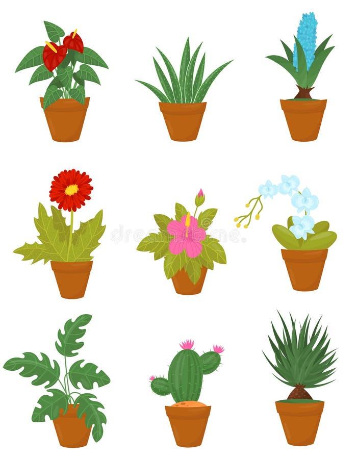 Plan vektoruppsättning av inomhus växter i bruna keramiska krukor Houseplants med gröna sidor och blommablommor vektor illustrationer