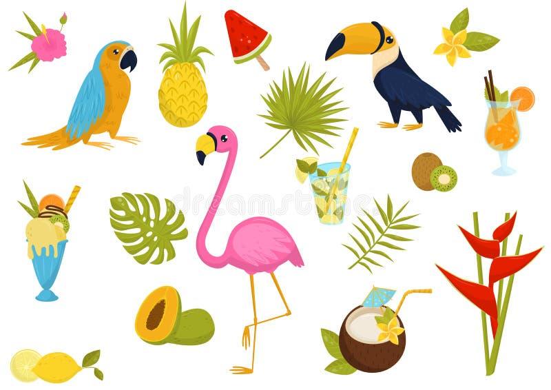 Plan vektoruppsättning av tropiska beståndsdelar Härliga fåglar, smakliga coctailar och frukter, glass, blommor och sidor av gömm royaltyfri illustrationer