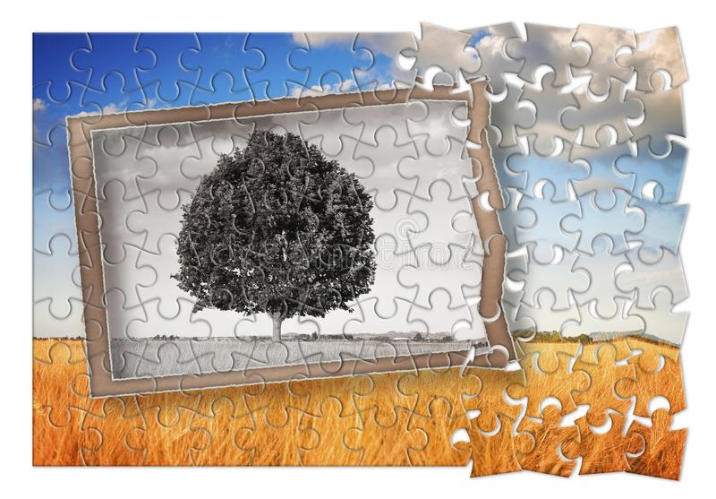 Plan your Tuscany vacation - Isolated tree in a Tuscany landscape Italy - concept in puzzle shape stock images