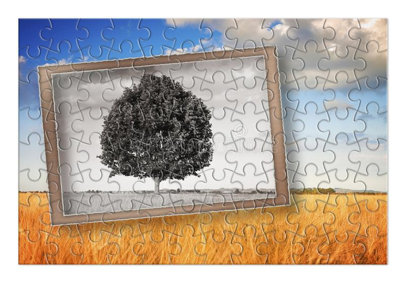 Plan your Tuscany vacation - Isolated tree in a Tuscany landscape Italy - concept in puzzle shape stock image