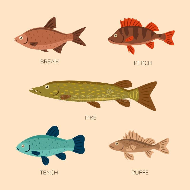 Plana fiskar för gullig tecknad film royaltyfri illustrationer