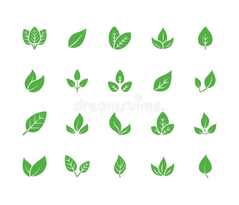 Plana skårasymboler för blad Växten träd lämnar illustrationer Tecken av organisk mat, naturligt material, bio ingrediens, eco vektor illustrationer