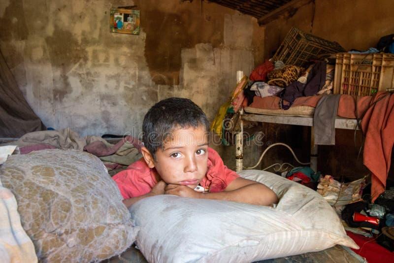 Planaltina, Goa-¡ s, Brasilien 7. Juli 2018: Eine Spinne, die auf sein Bett legt lizenzfreies stockfoto