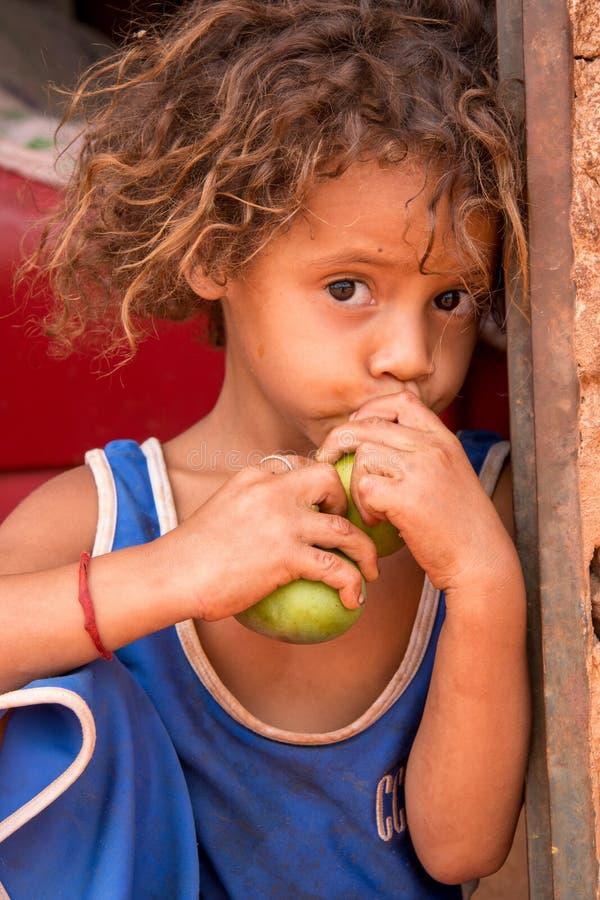 Planaltina, Goa¡ s, 27 Brazilië-Oktober, 2018: Een kleine zitting die neer een mango eten stock afbeeldingen