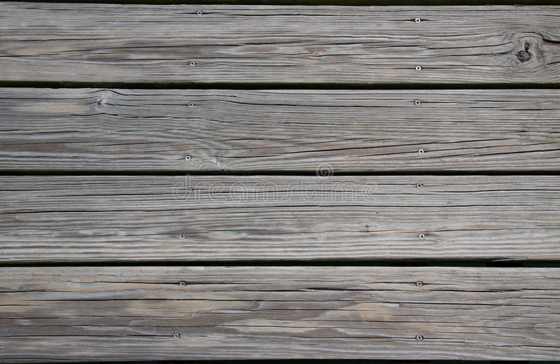 Plance sopravvissute fotografie stock